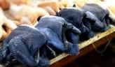 Pollo negro