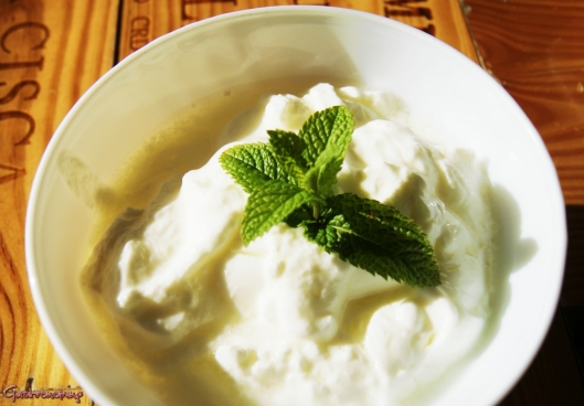 Helado de yogur y frutos rojos