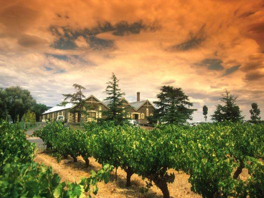 Región vinícola de Coonawarra